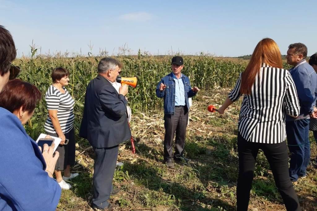 В этом году кукурузой в Ярославской области засеяли более 5 тысяч гектаров