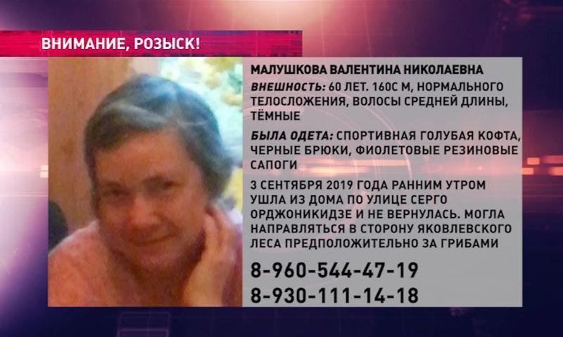 В Ярославле десять дней разыскивают пенсионерку, которая ушла за грибами