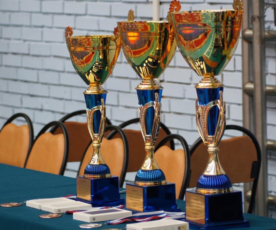Представители Ярославской области вышли в финал первенства России по самбо