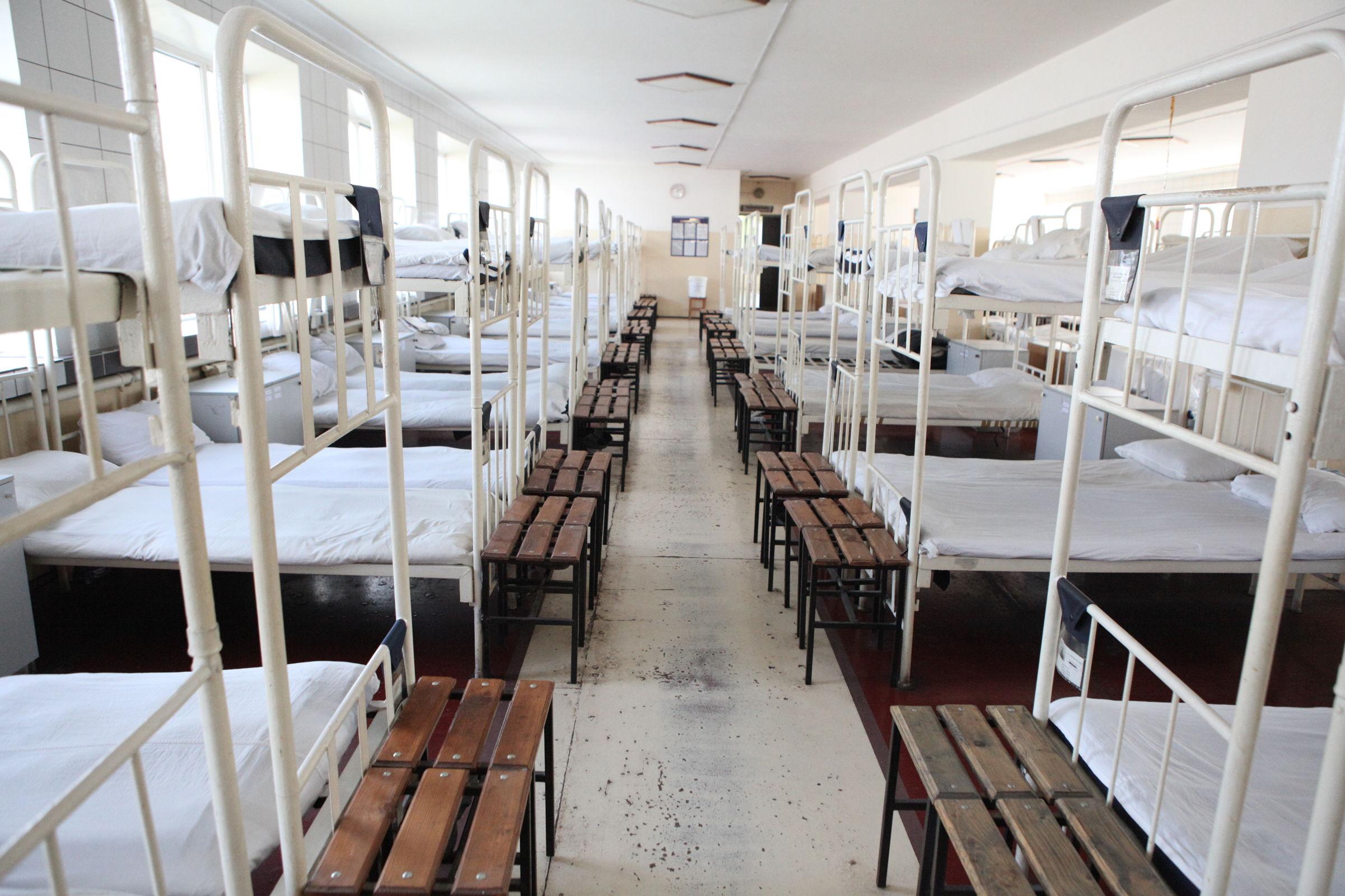В ярославской колонии шьют одежду и разводят свиней – фоторепортаж