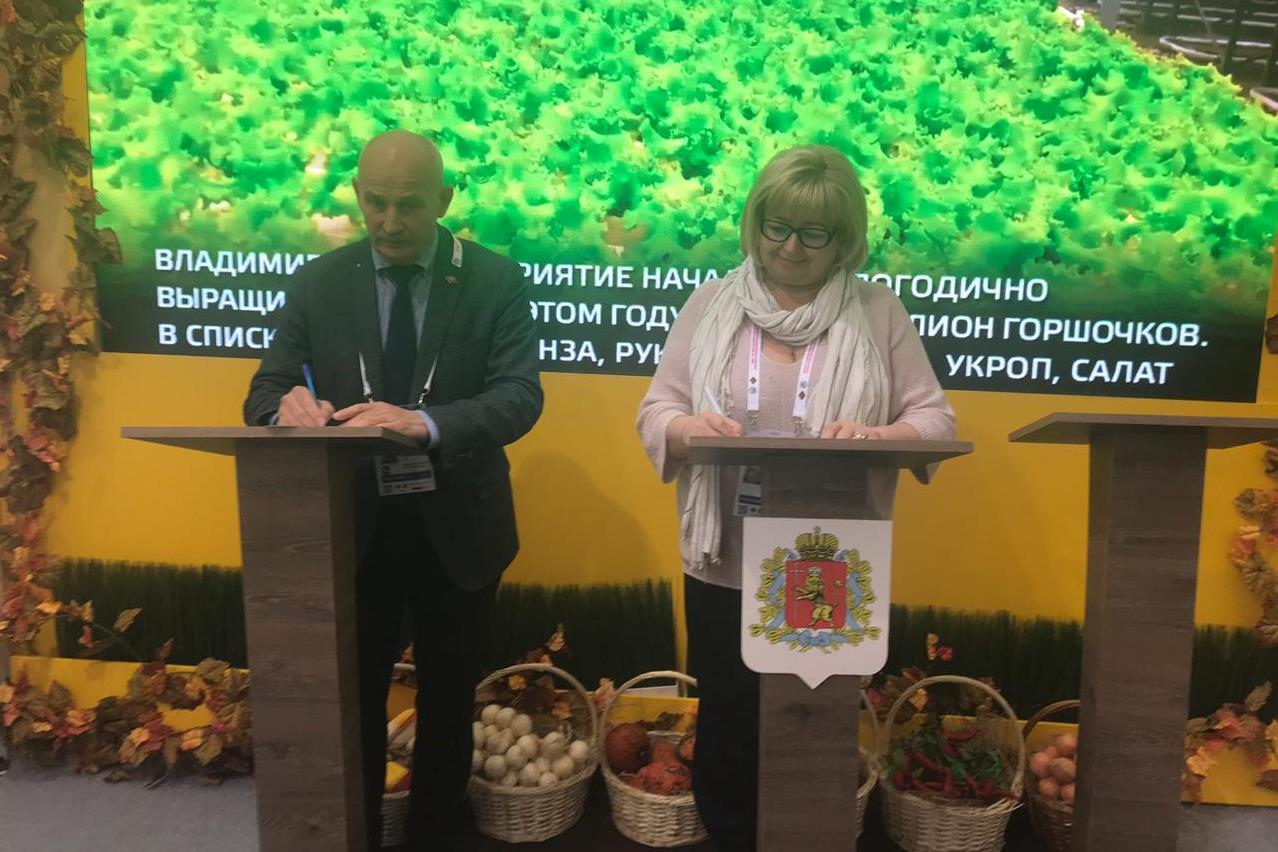 Подписаны соглашения с Вологодской и Архангельской областями о поставках дикорастущей продукции