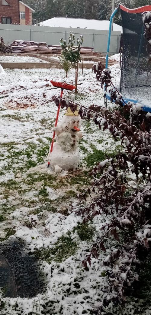 В Ярославле выпал первый снег: фото