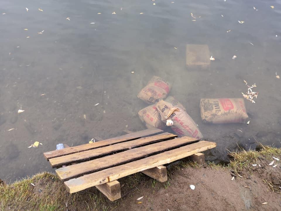 Вандалы в парке 30-летия Победы в Ярославле утопили новые лавочки