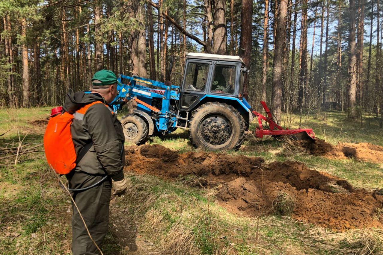 Нарушителей правил пожарной безопасности в лесах Ярославской области оштрафовали на 2,3 миллиона рублей
