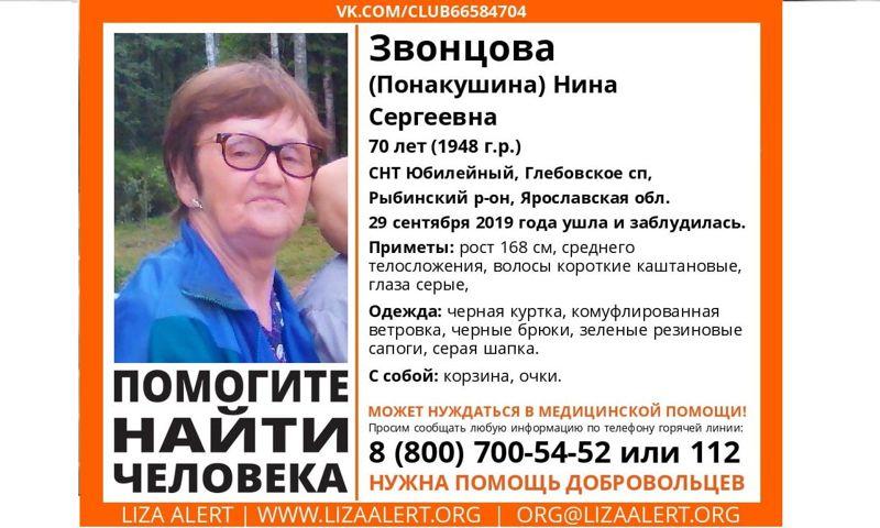 В Ярославской области почти месяц ищут заблудившуюся в лесу пенсионерку