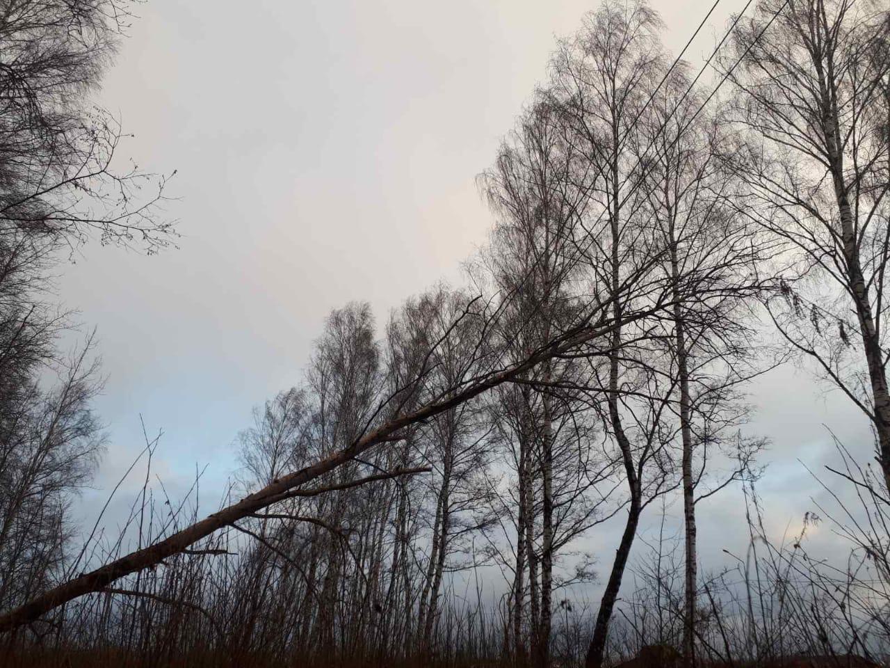 Энергетики Россети Центр и Россети Центр и Приволжье восстанавливают энергоснабжение потребителей, нарушенное природной стихией в ночь с 27 на 28 октября