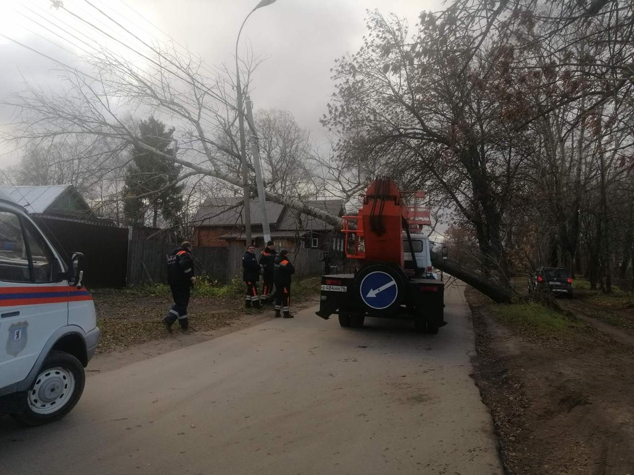 Ветер в Ярославле валил деревья и сносил заборы: спасатели ликвидируют последствия стихии