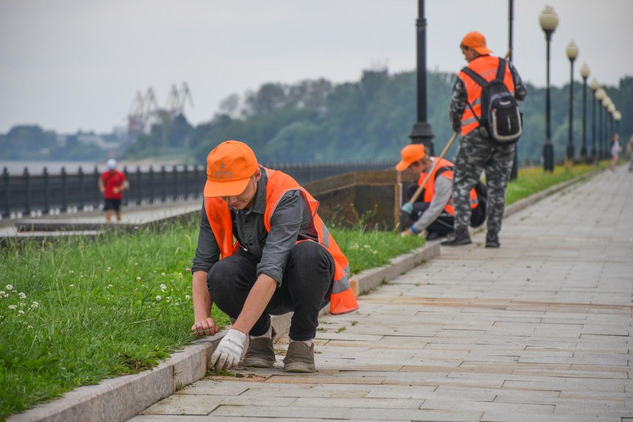 В этом году временную работу в Ярославской области смогли получить более 2300 подростков