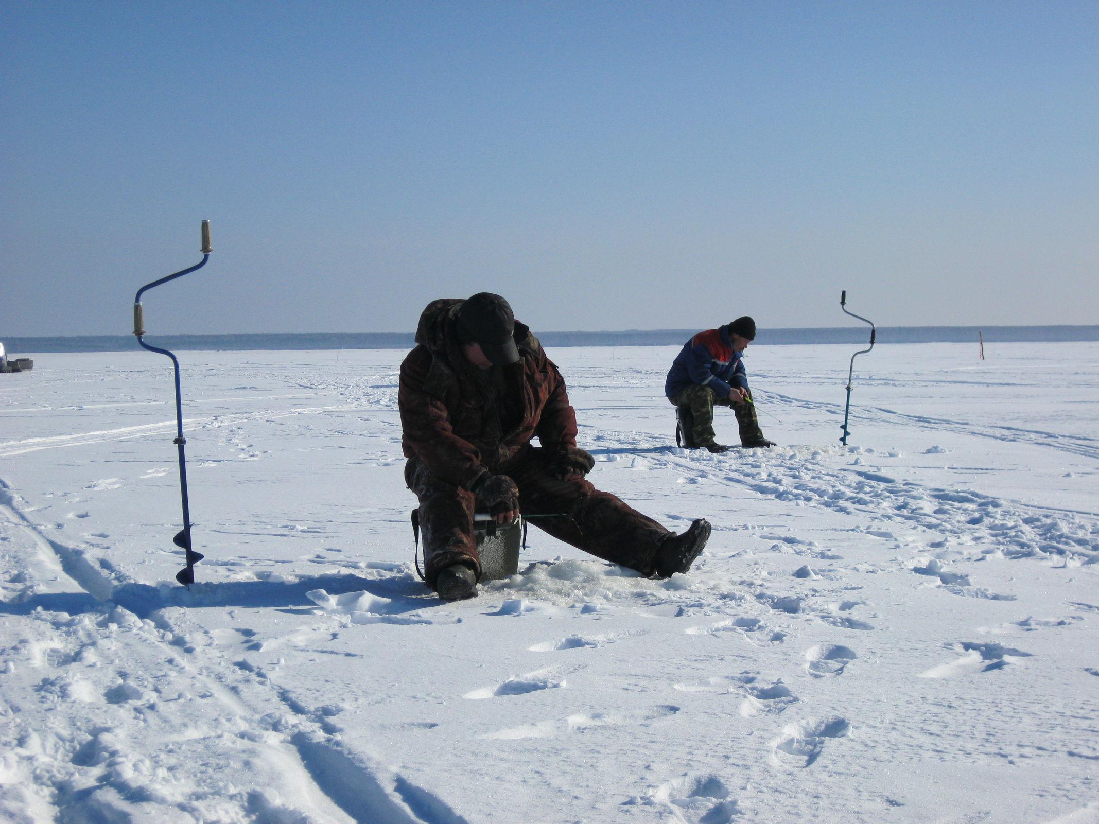В Ярославской области открыта горячая линия для борьбы с незаконным ловом рыбы