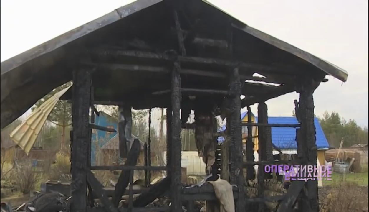 Спалили дачу и испортили машину: злоумышленник портит жизнь и имущество ярославского адвоката