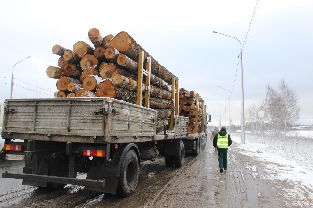 В Ярославской области с начала года выявлено 8 нарушений транспортировки древесины