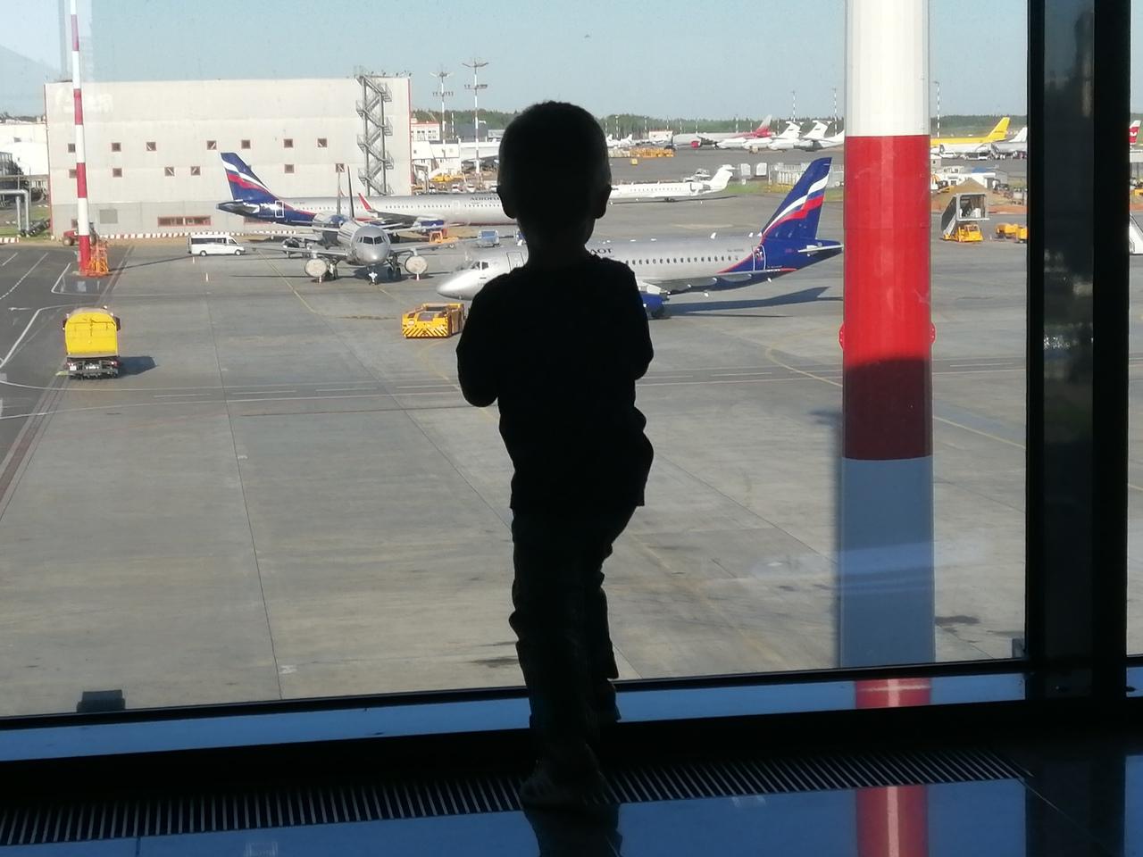 Запутался в детях и менял маршруты: топ-5 самых забавных историй о ярославских должниках
