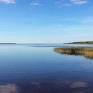 В Ярославской областной Думе прокомментировали ситуацию со строительством ЦБК на берегу Рыбинского водохранилища