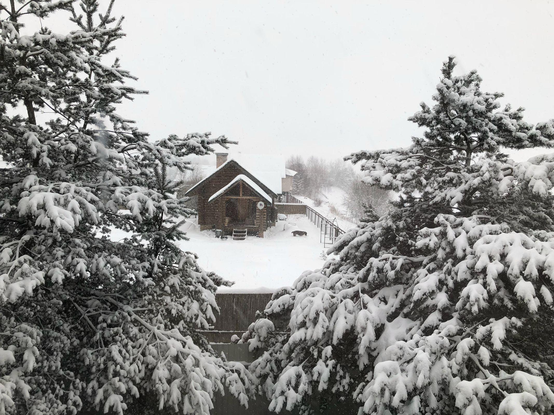 Снег и мощный ветер: ярославские спасатели выпустили экстренное предупреждение