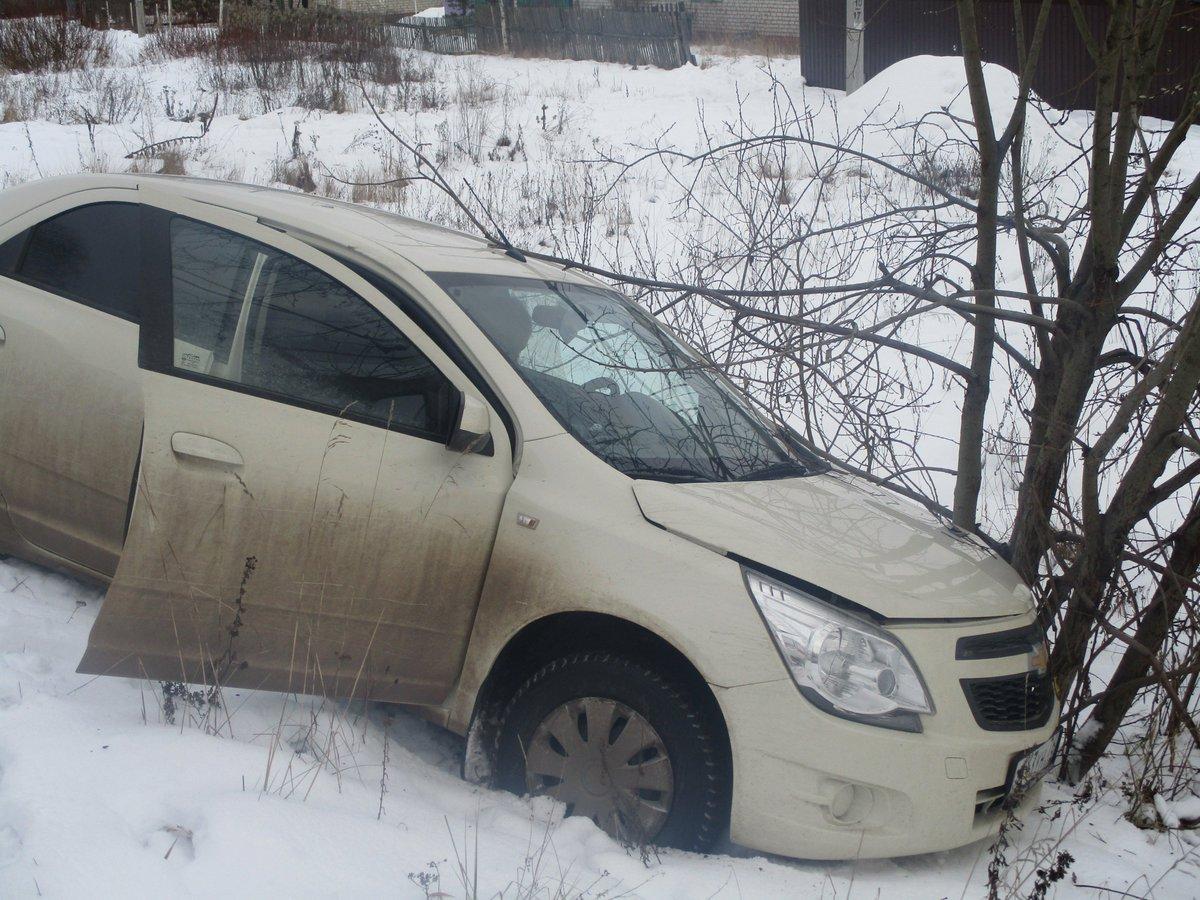 В Ярославской области иномарка вылетела в кювет и врезалась в деревья: погиб пожилой мужчина