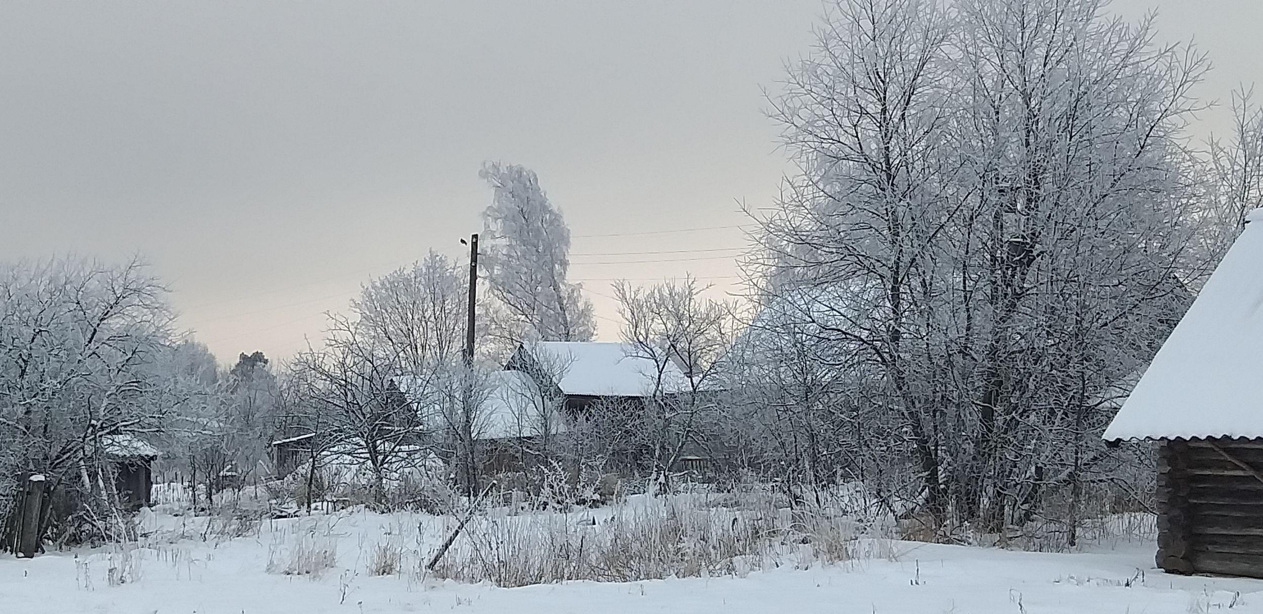 В Ярославле ожидается резкое похолодание: температура упадет до минус 16 градусов