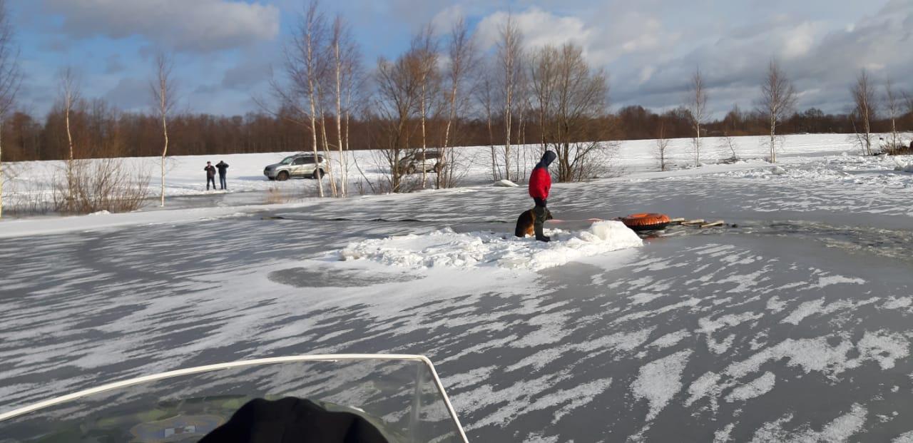 Под Ярославлем мужчина бросился на льдину выручать собаку, но спасать пришлось их обоих