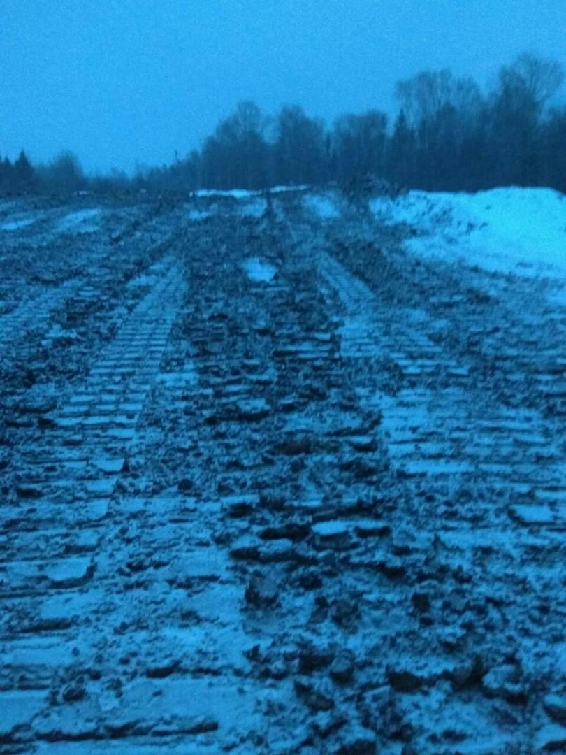 По факту ввоза токсичных отходов на полигон в деревне Ильинское проводится проверка