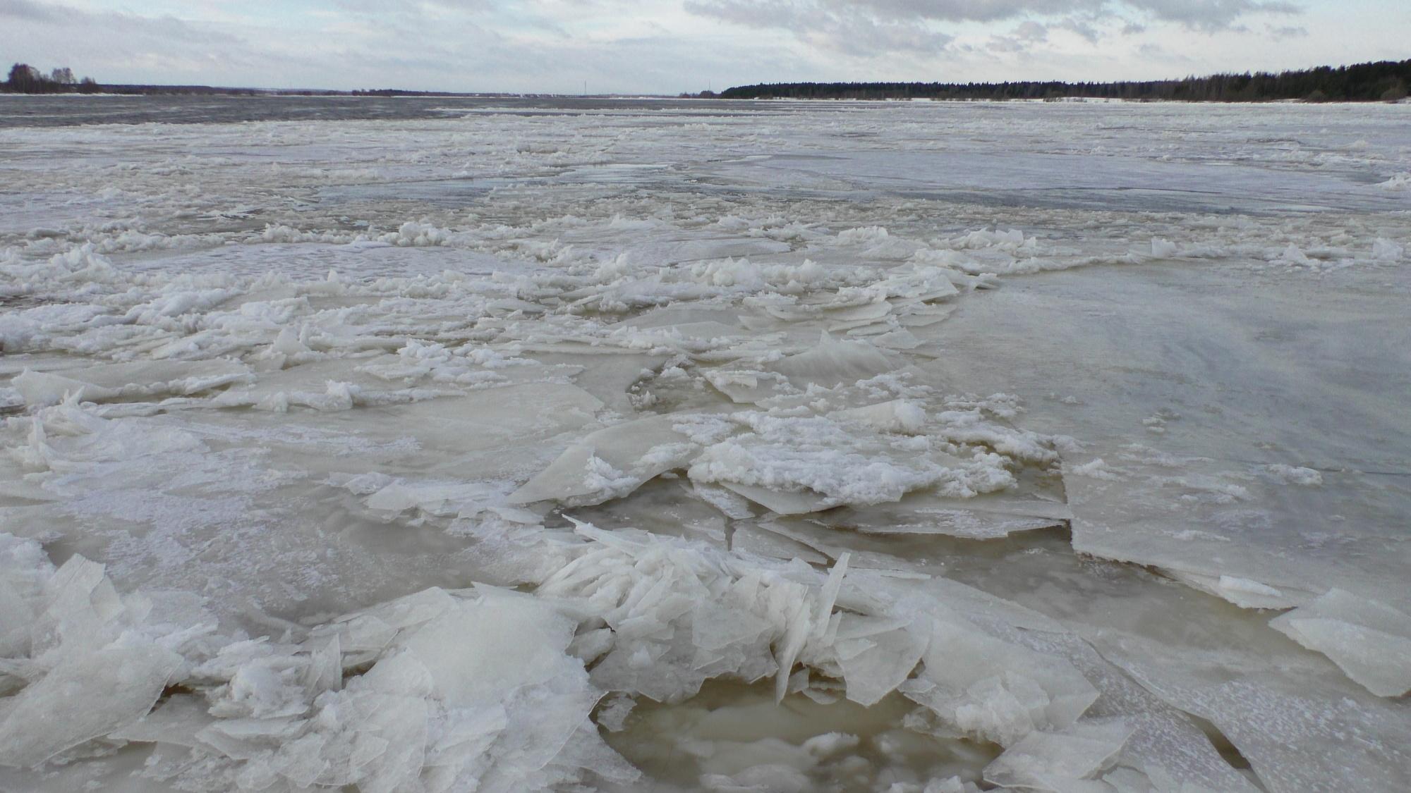 В Ярославской области предложили снизить мощности Рыбинской ГЭС для снижения уровня воды в Волге