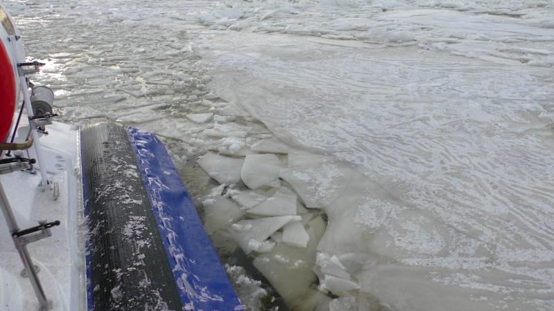 В МЧС рассказали, почему не снижается уровень воды в Волге: список подтопленных территорий
