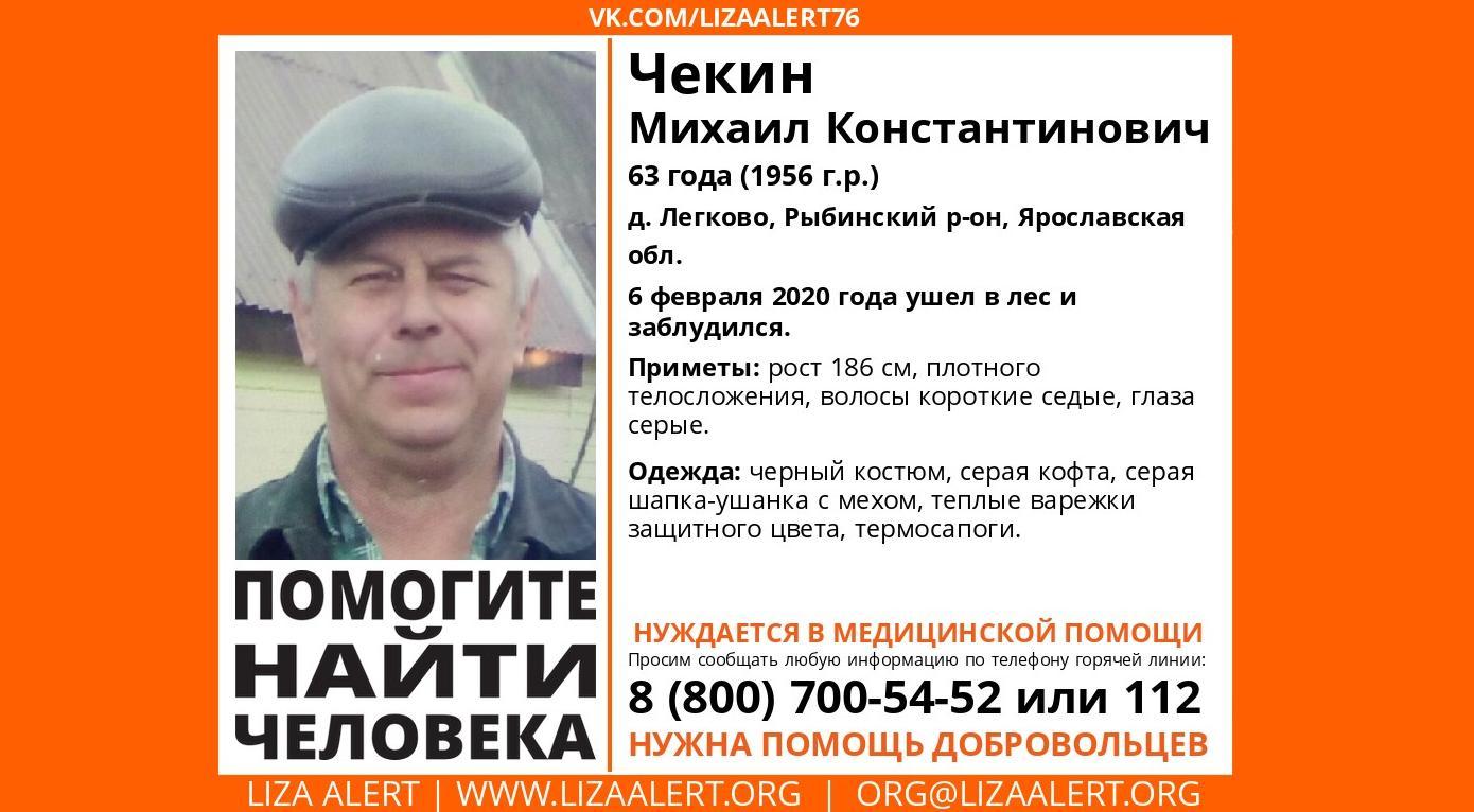 В Ярославской области ищут заблудившегося в лесу мужчину