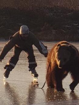 В Ярославской области медведь прокатил мужчину по льду: видео