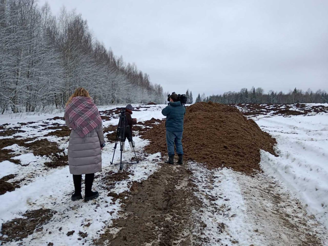 В Ярославской области начали проверку после жалоб жителей на кучи навоза в водосборной зоне