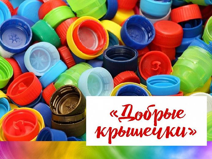 В ярославских школах появятся контейнеры для сбора крышечек от пластиковых бутылок