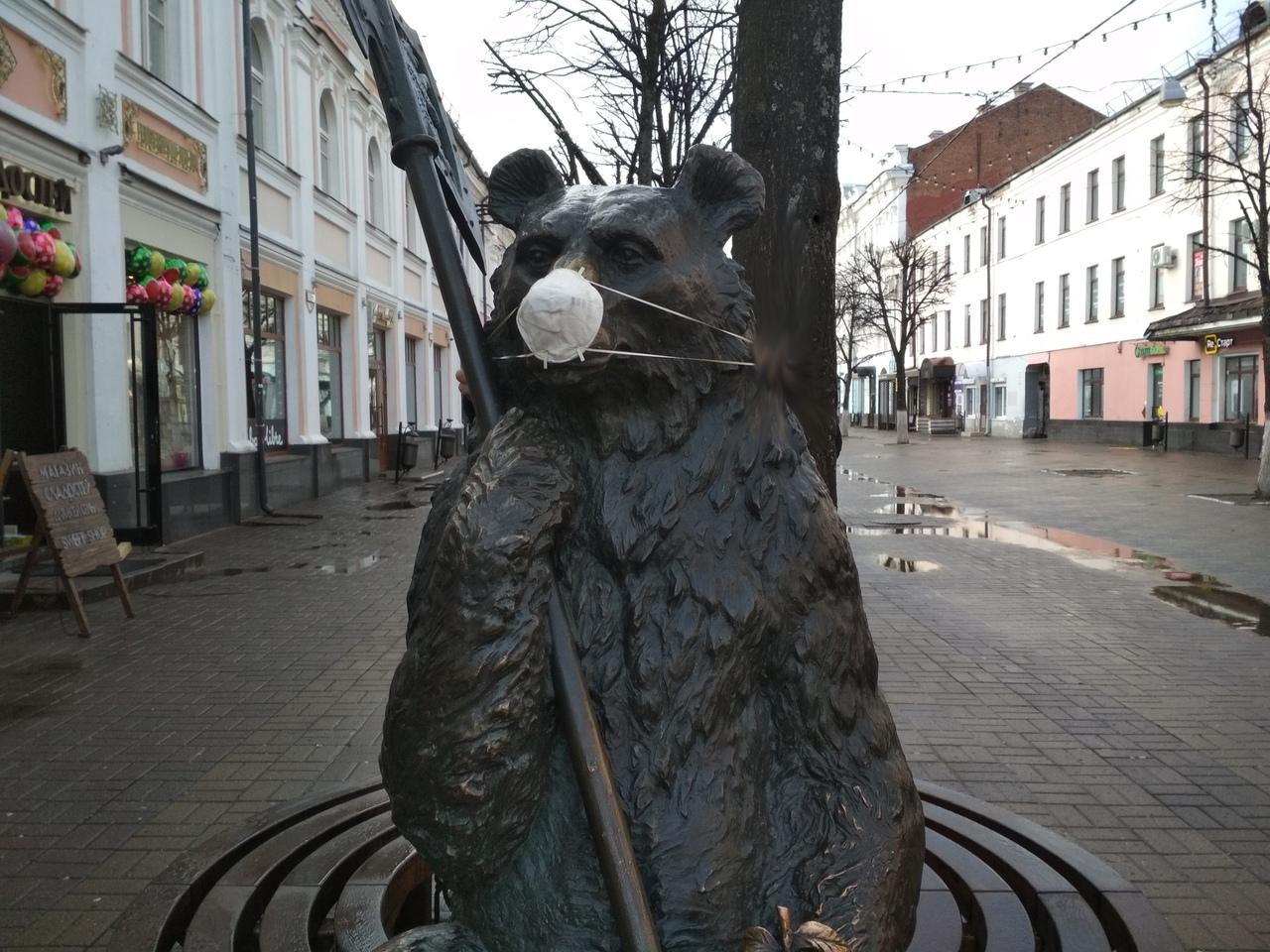 В Ярославле медведя с улицы Кирова защитили от коронавируса