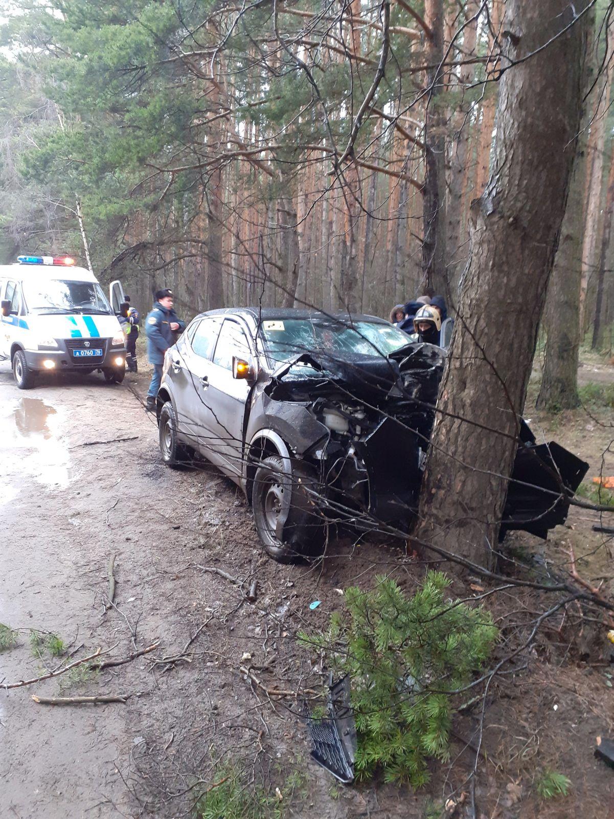 В Ярославском районе иномарка влетела в дерево: водитель погиб