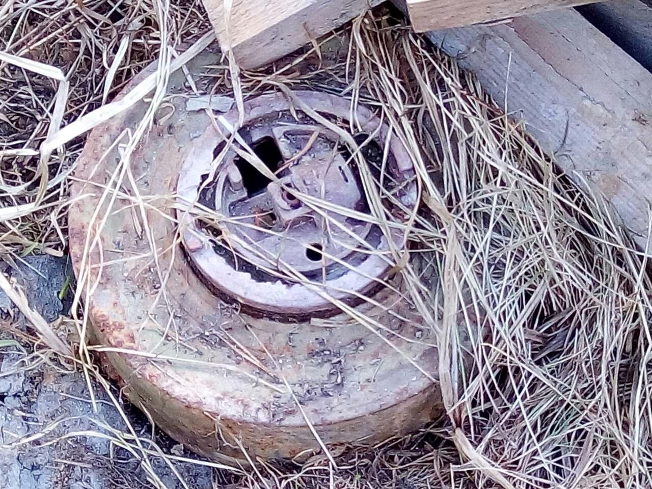 В Ярославской области на дачном участке нашли противотанковую мину