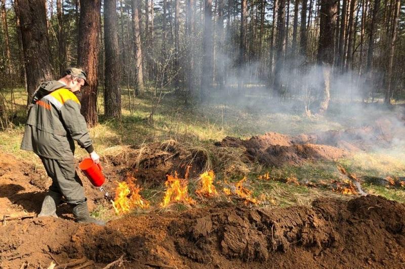 Пожароопасный период в Ярославской области в этом году начнется с 1 апреля