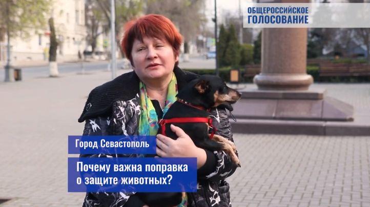 Почему важна поправка в Конституцию о защите животных: мнение россиян