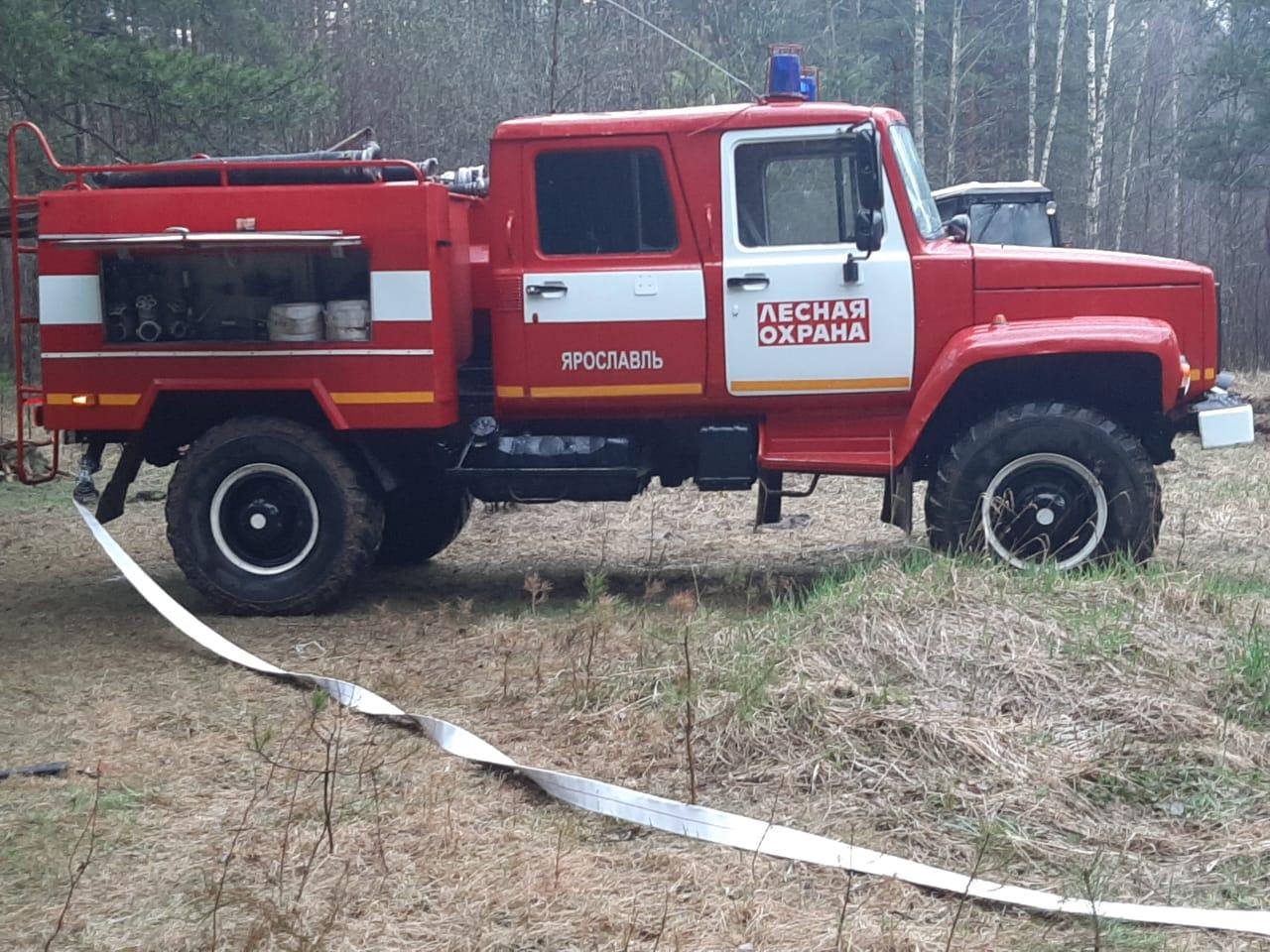 Более 800 км минерализованных полос будет создано в Ярославской области для защиты лесов от пожаров