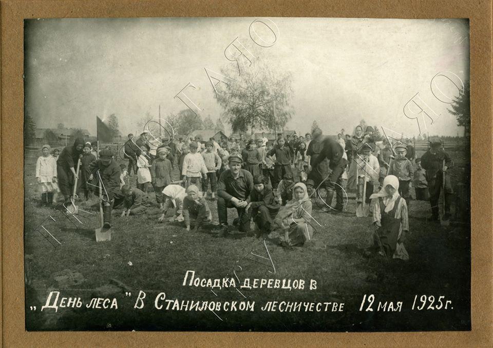 Зампредседателя правительства показал, как сажали леса почти 100 лет назад