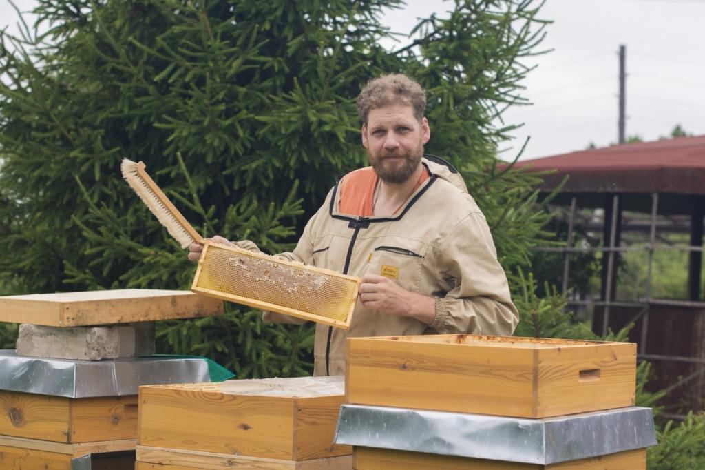 В Ярославской области в прошлом сезоне произвели 174 тонны меда