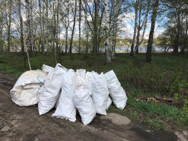 В Ярославской области на берегу Волги убрали еще одну свалку по сигналу жителей
