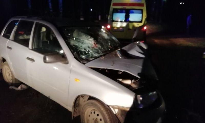 Пьяный без прав врезался в дерево: в Ярославле осудят виновника смертельного ДТП