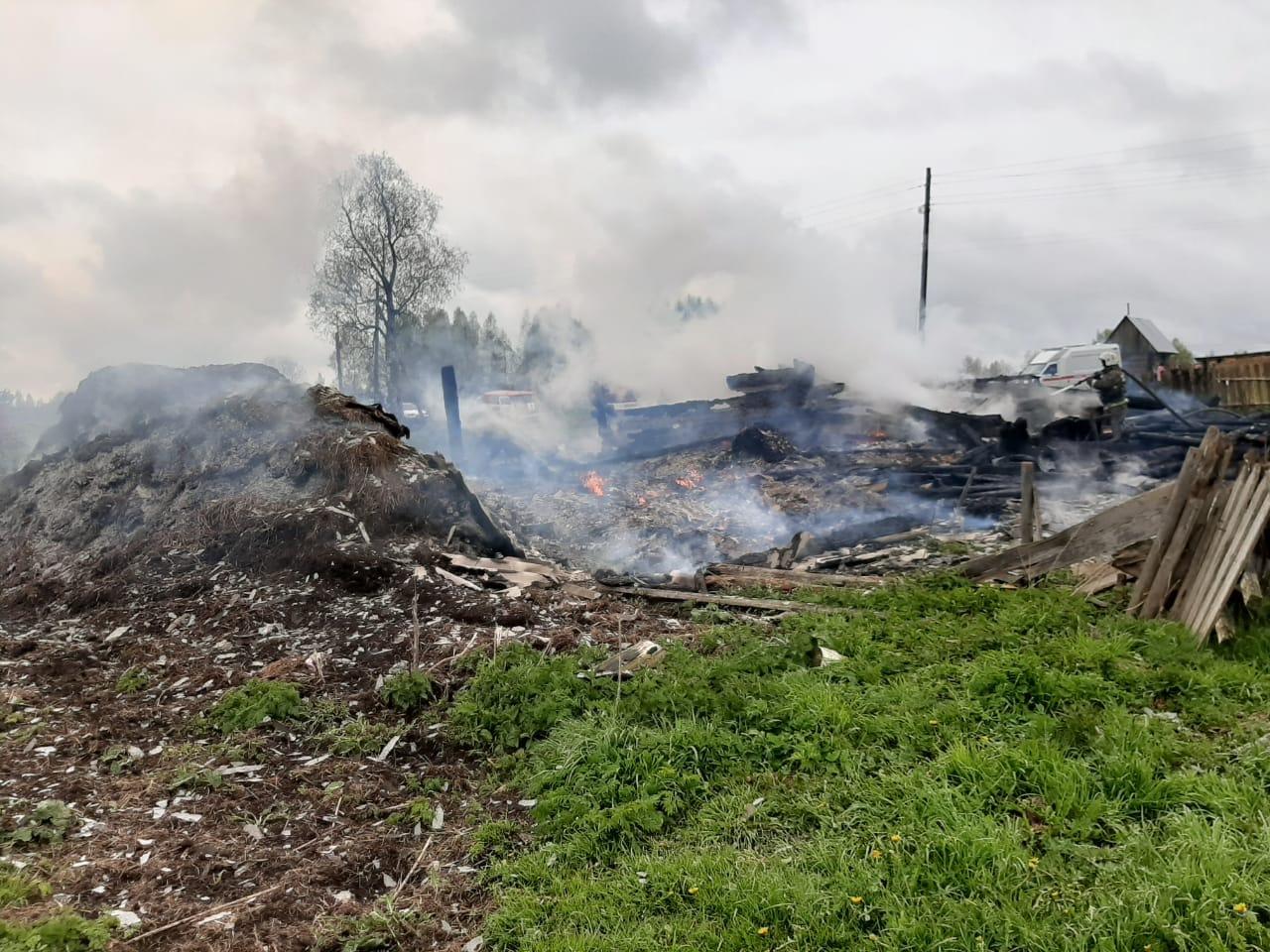 В Ярославской области на пожаре погибли три ребенка и пожилая женщина