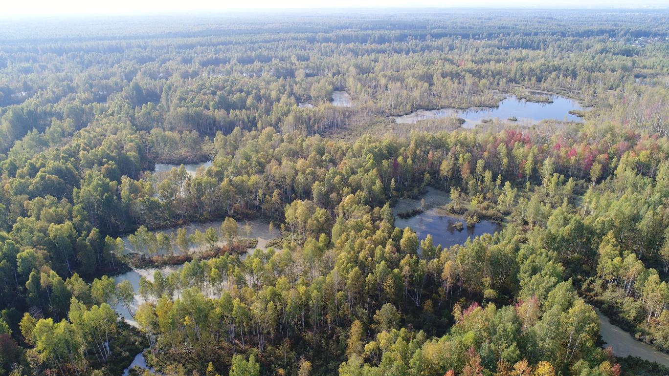 В регионе усилили контроль за соблюдением законодательства на особо охраняемых природных территориях
