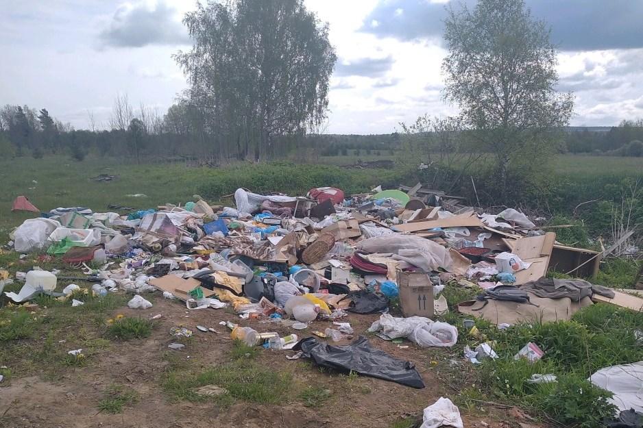 130 стихийных свалок выявили в Ярославской области с начала года