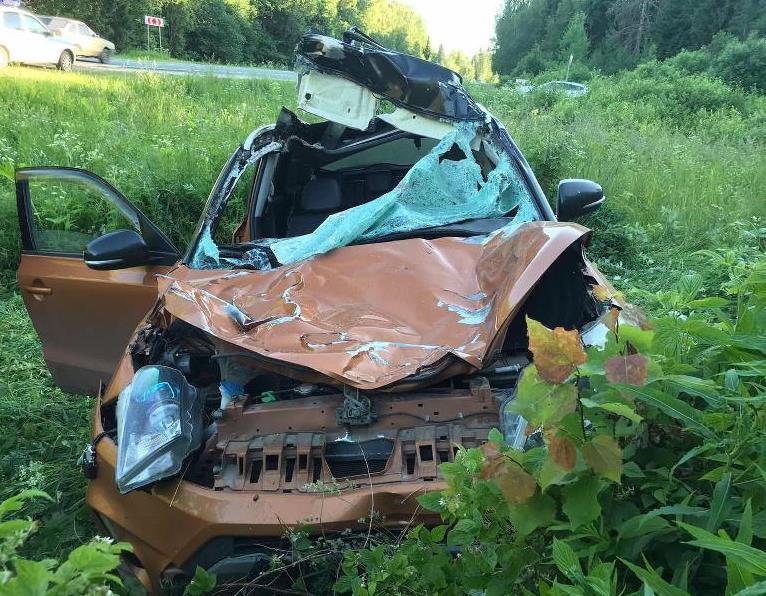 На трассе в Ярославской области иномарка насмерть сбила лося: два человека ранены