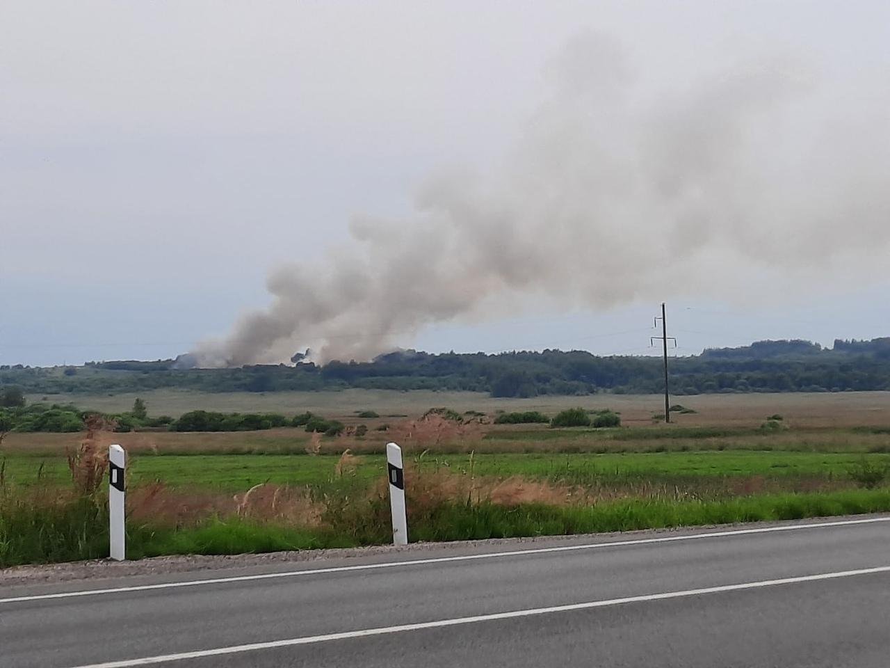 На мусорном полигоне в Ярославской области произошел пожар