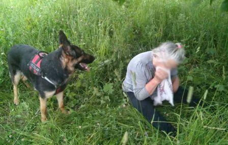 В Ярославской области поисковая собака нашла пропавшую бабушку в лесу
