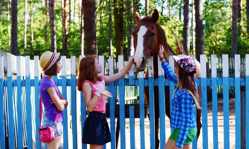 Летние каникулы 2020 для школьников Ярославля и Ярославской области