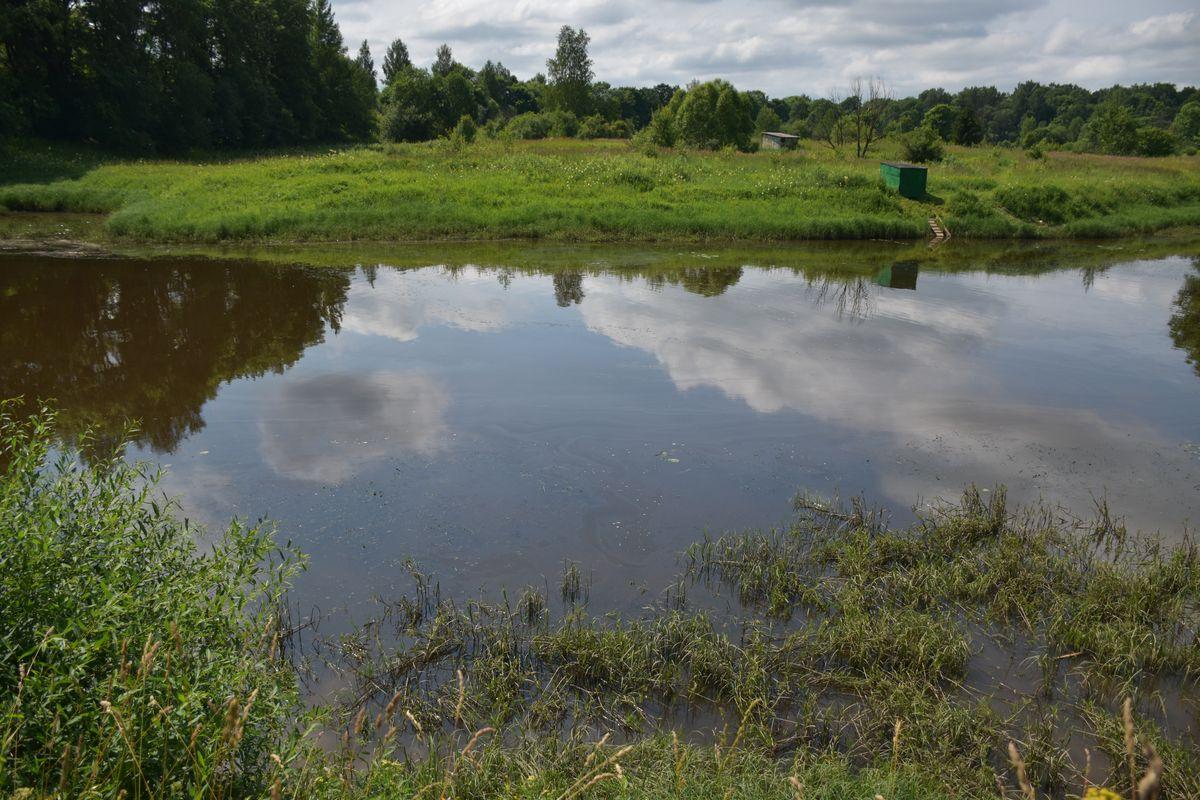 По факту загрязнения реки Печегда нефтепродуктами проводится проверка