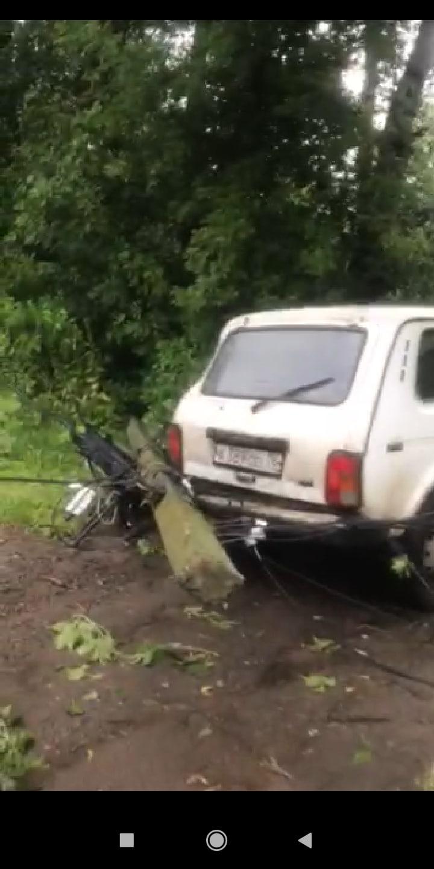 В Ярославле большой клен перегородил проезд к домам и повис на проводах, уронив столб на машину