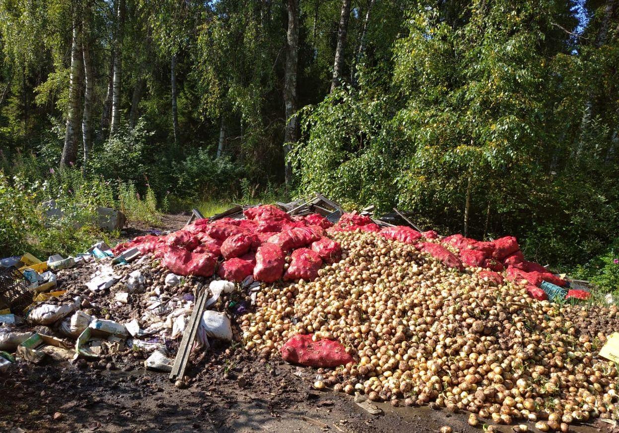 По факту организации стихийной свалки в районе деревни Белкино начато административное расследование