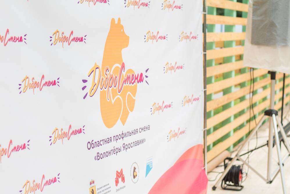 Профильные смены для волонтеров в Ярославской области станут традиционными
