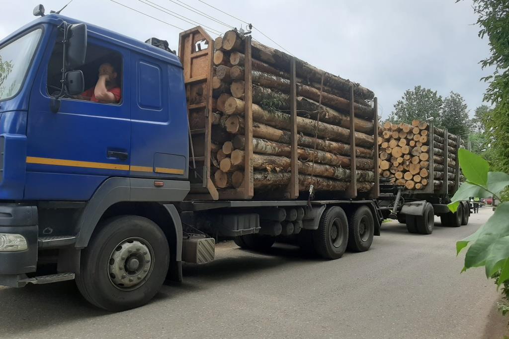 Более 100 рейдов по контролю за транспортировкой древесины провели в регионе с начала года